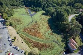 L'étang effacé, la nature va reprendre ses droits sur le site de Monnerie, à Cussac (87)