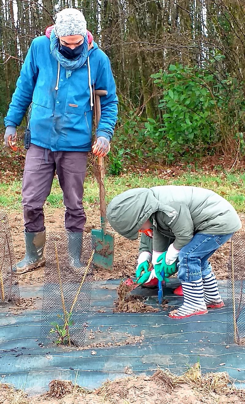 Environnement : La Forêt s'est invitée à l'école de Ladignac le Long (87)